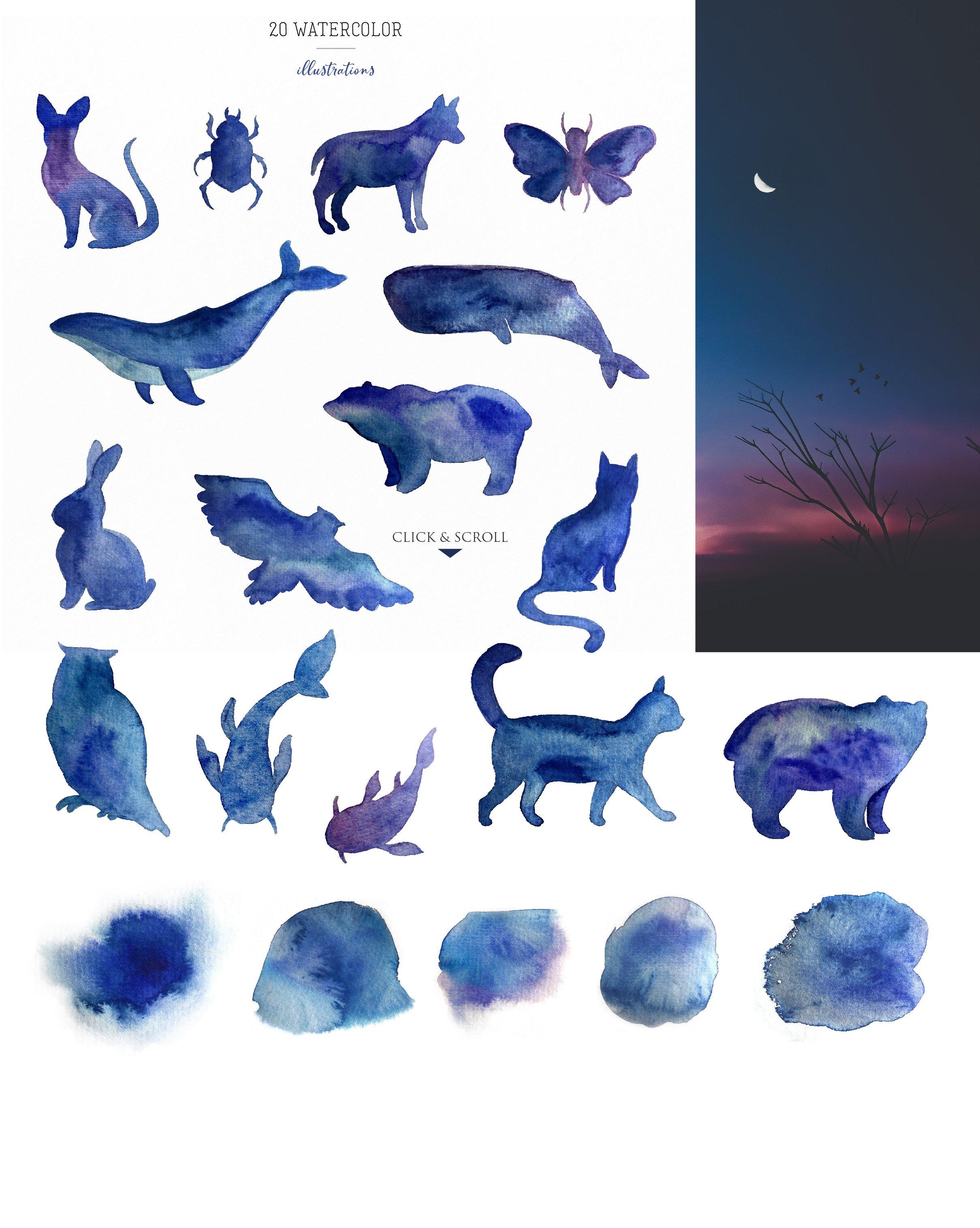 mystic animals 03 6