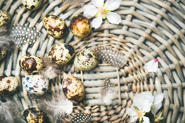 Holiday Stock Photos - Natural colored quail eggs for