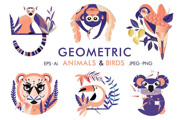 Illustrations: TashaDraw - Geometric animals and birds