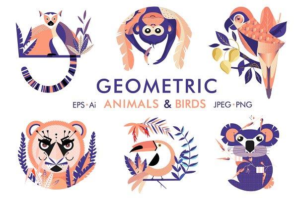 Illustrations: TashaDraw - Geometric animals and birds