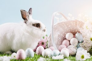 White bunny and Easter eggs and deco