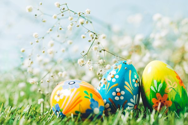 Three Easter eggs on green grass.