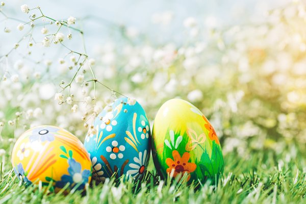 Easter eggs on the green meadow.