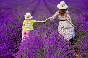 mother and daughter at lavender fiel