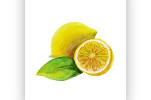 lemon. watercolor painting
