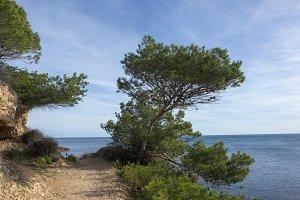 The coast of l'ametlla de mar