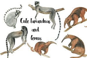 Watercolor lemurs and tamandua