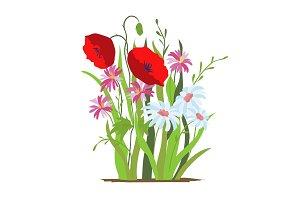 Flowerbed. Flower red poppy. Set of