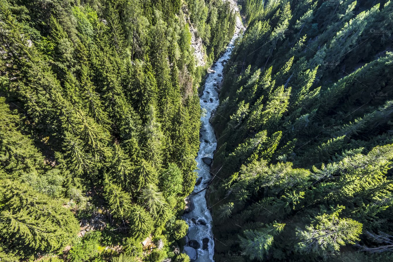 Aerial View Of A Forest River Nature Photos Creative