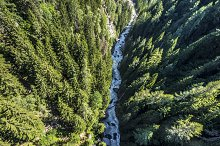 Aerial view of a forest river
