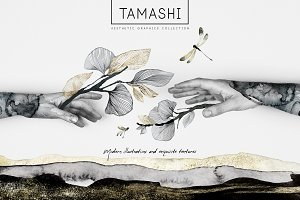 """Tamashi"" Elegant Graphic Collection"