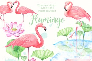 Watercolor flamigo cliparts