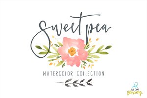 Sweet pea watercolor collection