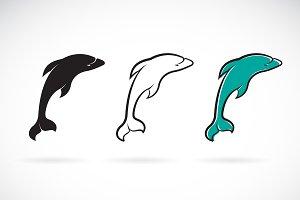 Vector of dolphin design. Fish Icon.