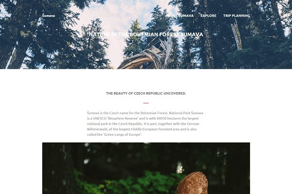 Sumava: Multi-Purpose HTML Template