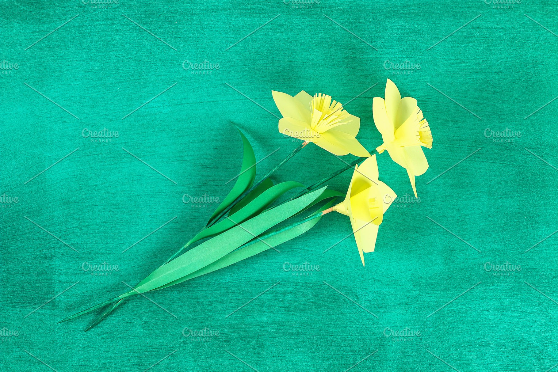 Diy Spring Flowers Daffodils Of Yell High Quality Holiday Stock