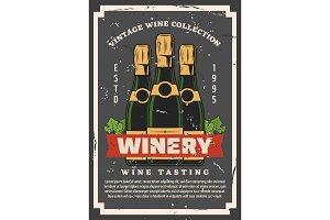 Brut grape wine in bottles, winery