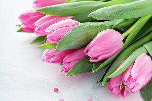 Pink tulips for Valentines day