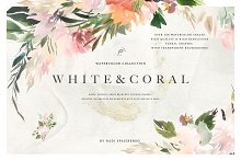 Watercolor White & Coral Flowers