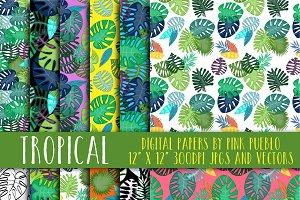 Tropical Leaf Patterns & Backgrounds