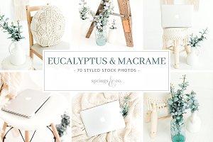 Eucalyptus & Macrame Photo Bundle