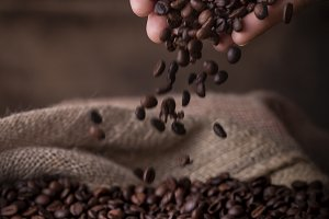 Hands pouring coffee beans to sack
