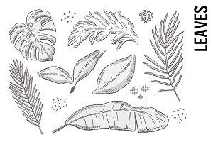 Leaf Doodle Clipart