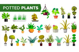 Potted Plants Set Vector. Green