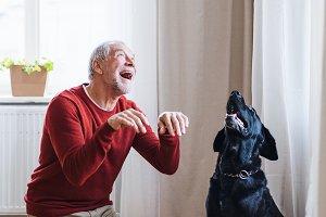 A senior man indoors with a pet dog