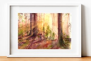 Sun in the Forest - Illustration