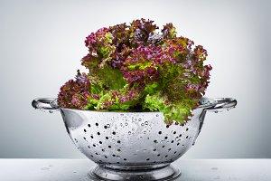 lettuce in a colander