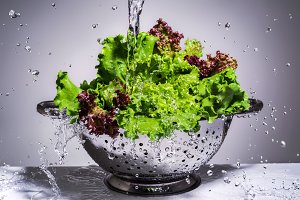 Washing lettuce in a colander