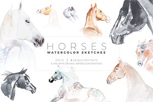 9 watercolour horse sketches