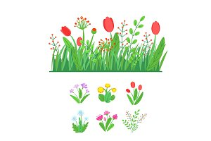 Spring garden blooming flowers with