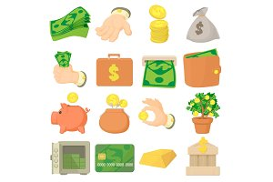 Kinds of money icons set, cartoon