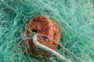Fishing nets (55)