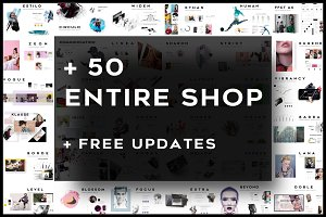 + 50 in 1 Entire Shop + Free Updates