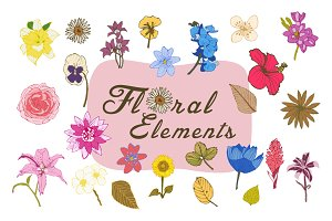 Vector Flower Elements&2 Cards