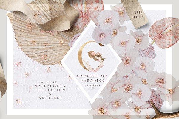 Luxury Blush - Boho Wedding Set