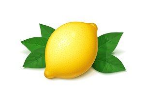 Ripe, juicy lemon with green leaf.
