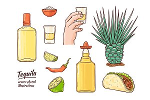 Vector glass tequila bottle sketch