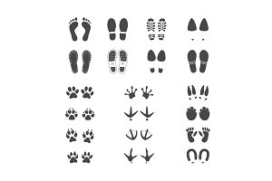Vector illustration set of different