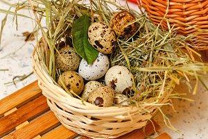 Quail eggs in basket. Protein.