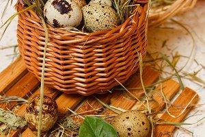 Quail eggs in basket. Diet food.