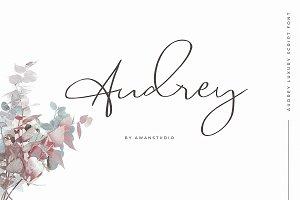 Audrey | Luxury Script Font
