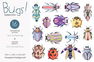Watercolor Bugs (Insects) Collection