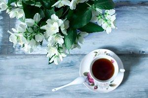 Jasmine flowers and cup of tea