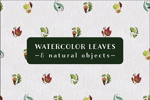 Watercolor Leaves and Patterns