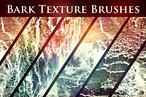 50 Bark Texture Brushes