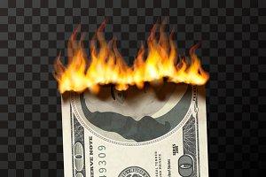 Realistic burning 100 USA dollars